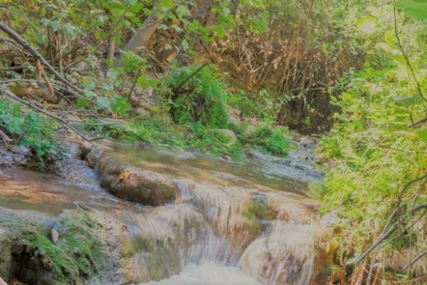 ימי כיף להרות - טיול בנחל
